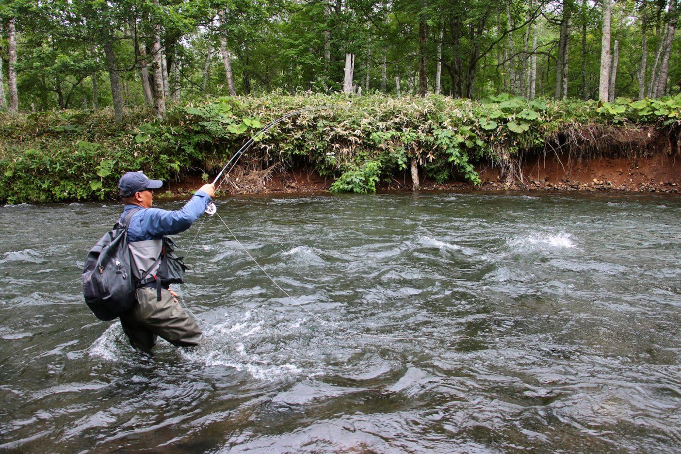 狙った場所へ首尾よくフライを流せれば、魚は素直に反応してくれる。 写真:佐々木大