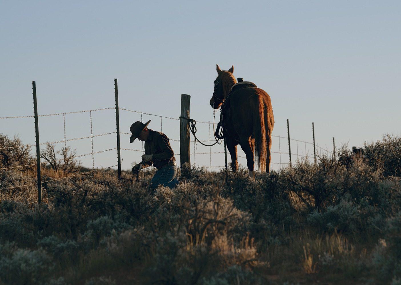 馬と一緒に柵を修理中。