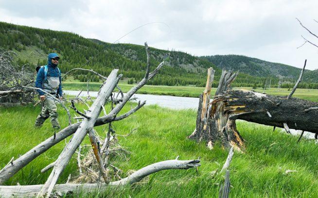 2018年6月アイダホ州イエローストーン国立公園、アメリカ本社のフィッシング担当者と共にフィールドで製品を試した。