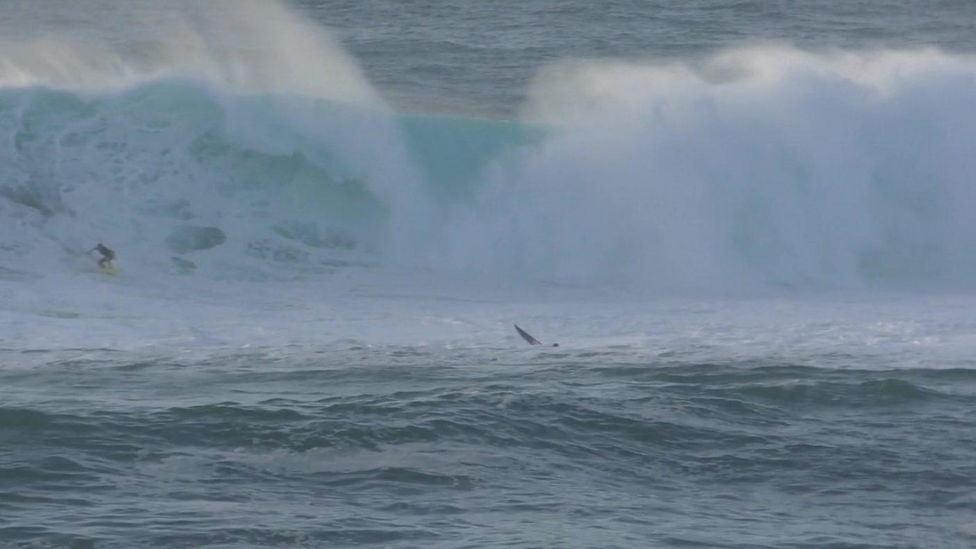 この波を乗り切り、無事に浜へと戻ると、緊張の糸が切れたのか突然、武者震いに襲われた。オアフ島ノースショア、ワイメア・ベイ Photo: Dee Wada