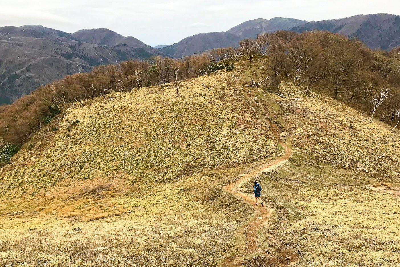 御在所岳に向け稜線を行く