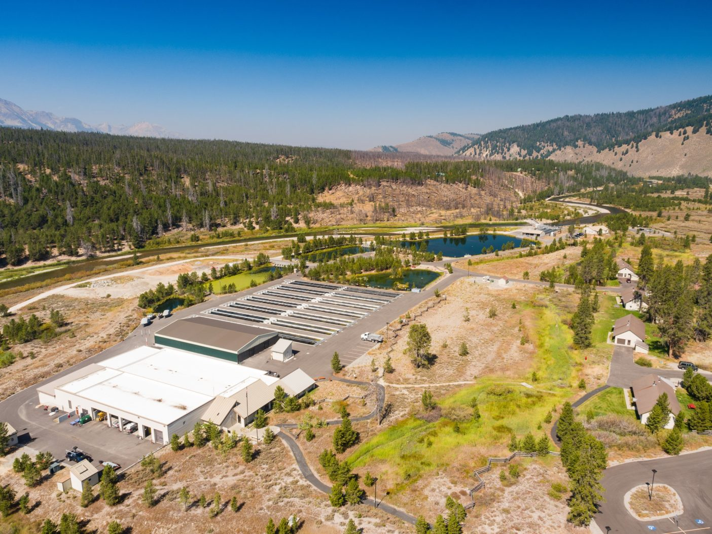 スネーク・リバー下流のダムの影響を緩和する目的で、ボンネビル電力局の出資で建てられたソートゥース魚類孵化場の年次目標は、約170万匹のスチールヘッドと200万匹のチヌークサーモンの稚魚をアイダホ州のサーモン・リバーに放流すること。孵化場が見込む魚の回帰率は1パーセントである。写真:ベン・ムーン