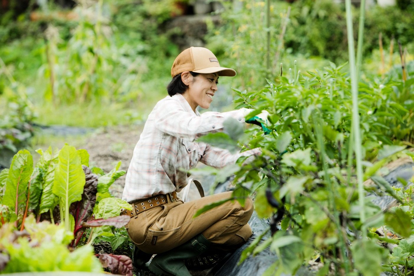 妻の美子さんが丹精込めて手入れする自家菜園。マメ類、ナス、トマト、キュウリ、ネギ……自分たちが食べたい野菜を季節に応じて育てている。写真:五十嵐 一晴