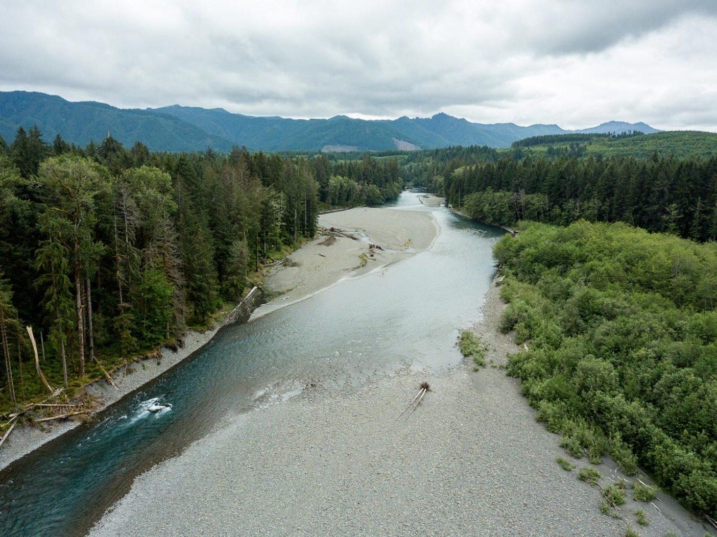 健康な川は気の向くままに流れ、川岸に水をみなぎらせ、流れを完全に変える。細く突き出た石の陸地は川を塞いでいるように見えるが、実際は水が移動するための空地である。Photo: Colin Wiseman