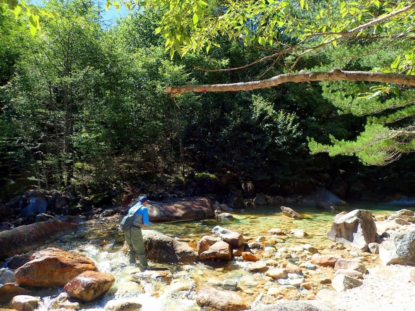 ディランは環境保全に奔走する活動家でもあるが、夢中で竿を振る姿は、やはり生粋の釣り人。 写真:福本玲央
