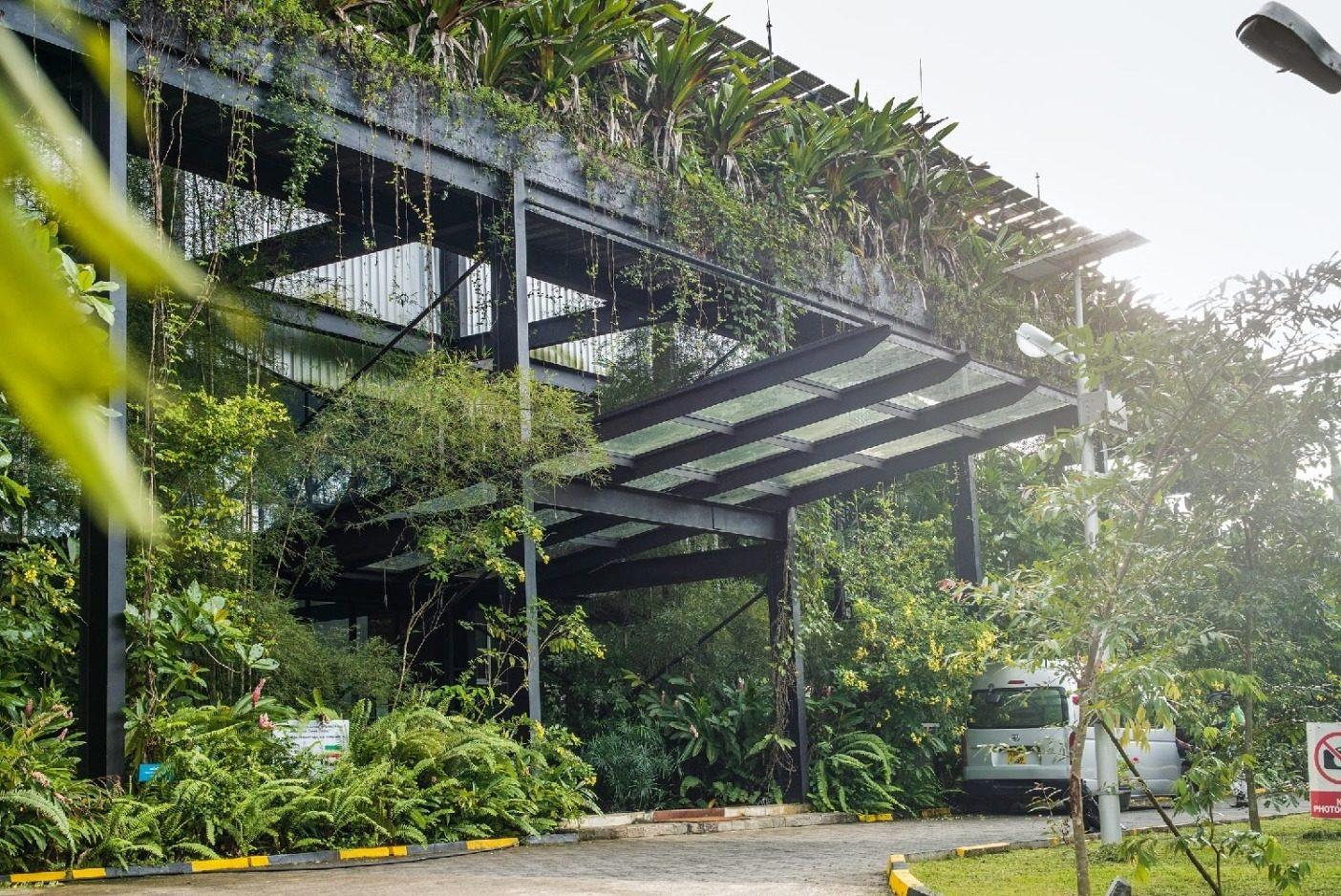 パタゴニアのパートナーであるスリランカのアガラワッタにあるヒルダラマニ・グループのミヒラ工場は、カーボン・ニュートラル施設を運営しており、そこはLEEDグリーン・ビルディングのゴールド認証を受けている。世界銀行グループによると、地球規模で二酸化炭素排出抑制措置を取らなければ、スリランカの1,900万人以上の住民(人口の90%以上)が、2050年までに中程度から重度の「ホットスポット」地域に住むことになるという。Photo:Tim Davis