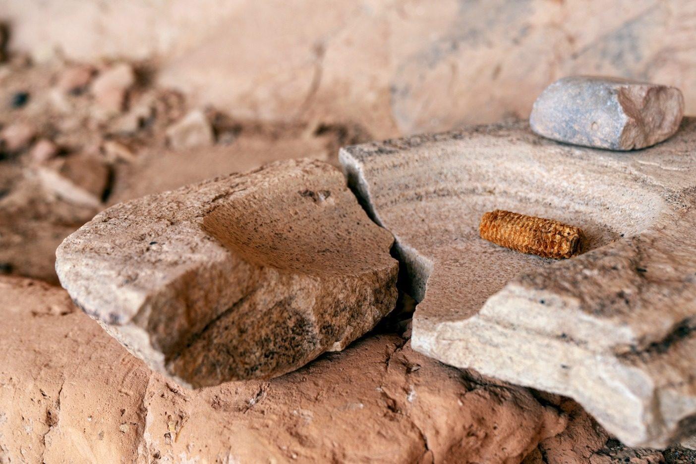 割れた磨石に乗せられたトウモロコシ。そのすぐ上にはもうひとつの石が乗せられている。Photo: Michael Estrada