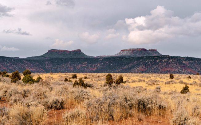 これらのビュートはユタ州シーダー・メサを彩るピニオンとジュニパーの森と谷間の上で、熊の頭から出る耳に似ていることにより命名された。Photo: Michael Estrada