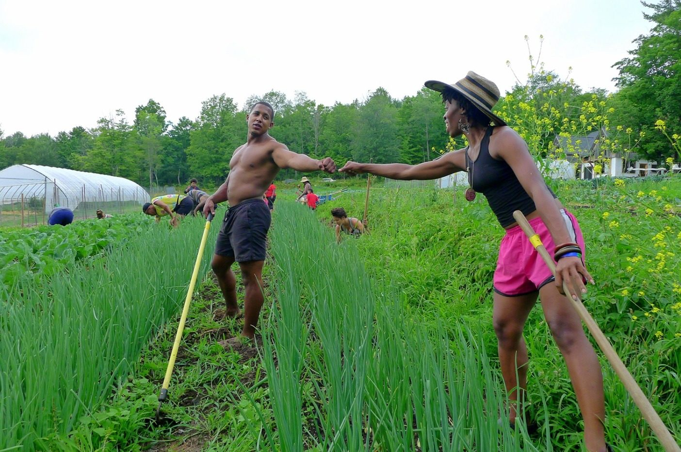 フィストバンプするソウル・ファイア農場主催の「黒人・ラテン系住民農業従事者集中訓練」の参加者たち。「土壌の陽イオン交換容量」概念のマニアックな詳説や、黒人と褐色人種が土壌との関係を癒すために必要な文化的・歴史的な教義など、さまざまな内容をバランスよく組み合わせ、1週間にわたって、持続可能な小規模農業を綿密に紹介する企画だ。Photo:Leah Penniman