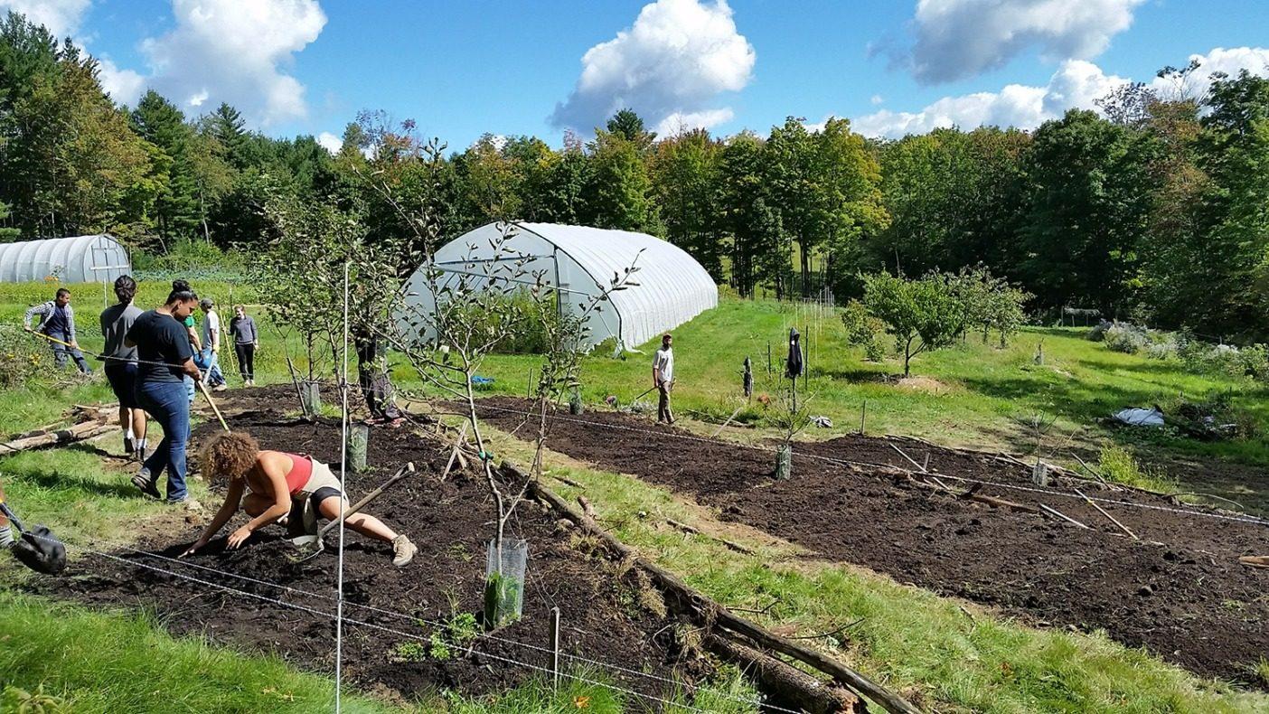 傾斜地で平な台地形成に手を貸す、「コンビット」(コミュニティ協働の日)と呼ばれるボランティア。台地形成は土壌の流出を防ぎ、作物の収穫量を増加させる。Photo:Leah Penniman