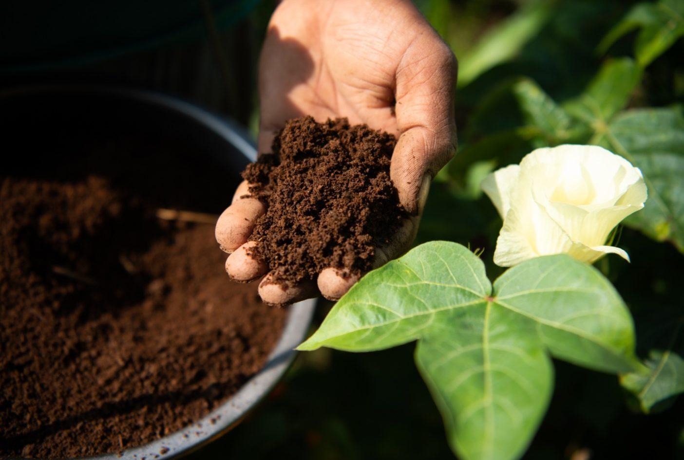 インドのこうした畑では、土を肥やすために数週間ごとに乾燥堆肥を加える。土壌の質が収穫高、保水力、そして地中にどれだけ炭素を貯留できるかに影響する。