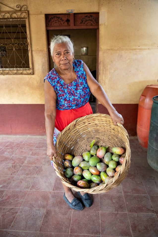 手作りのかごにマンゴーを入れ、収穫所へと運ぶ農家。そこで計測した重さに基づいて、賃金が支払われる。ニカラグア、サンマルコス Photo:Amy Kumler