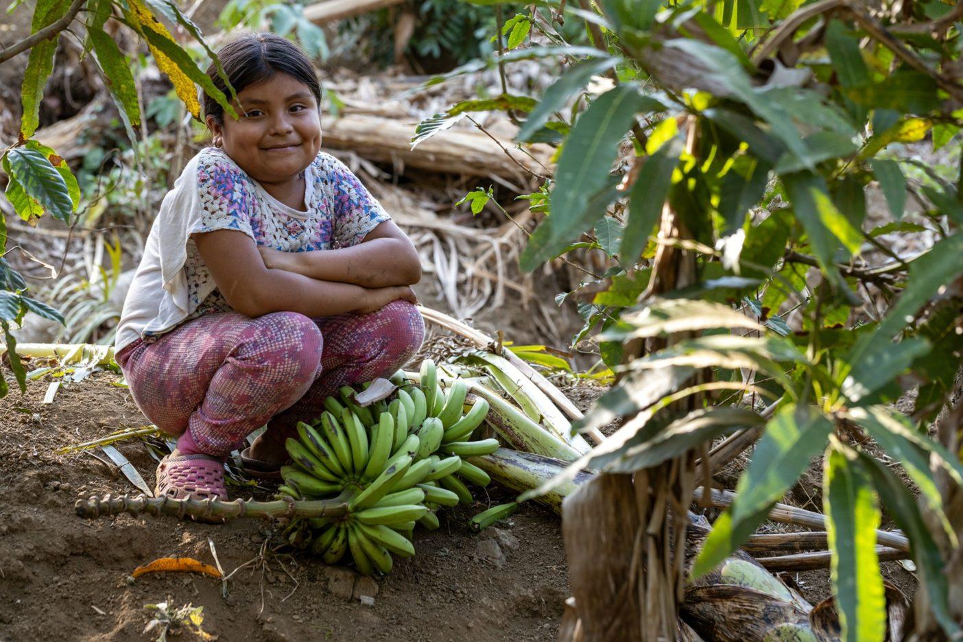 収穫されたバナナの束の傍らに座る農家の娘。多種の作物を育てると、農家にとっては通年頼ることのできるさまざまな収入源ともなり、彼らの子どもたちの生活の質を改善することにもつながる。Photo:Amy Kumler