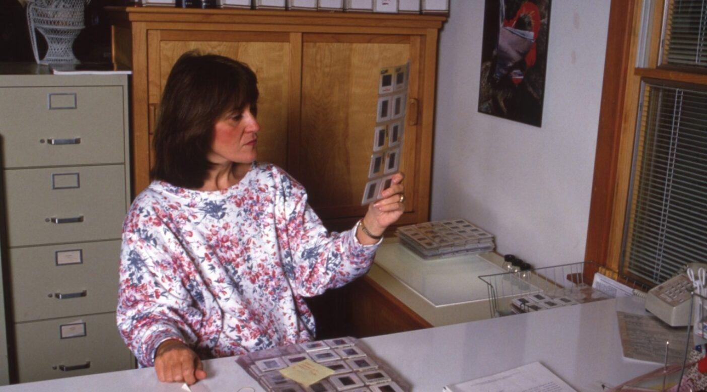 本領を発揮:高い机の後ろに座り(下には1人か2人、子供がいたかもしれない)スライドを選別するジェニファー。使いたい写真を選び、残りは送りかえし、取っておくものはキャスター付きカート(毎晩、耐火金庫に押し込んだ)に収めた。Photo:Patagonia Archives