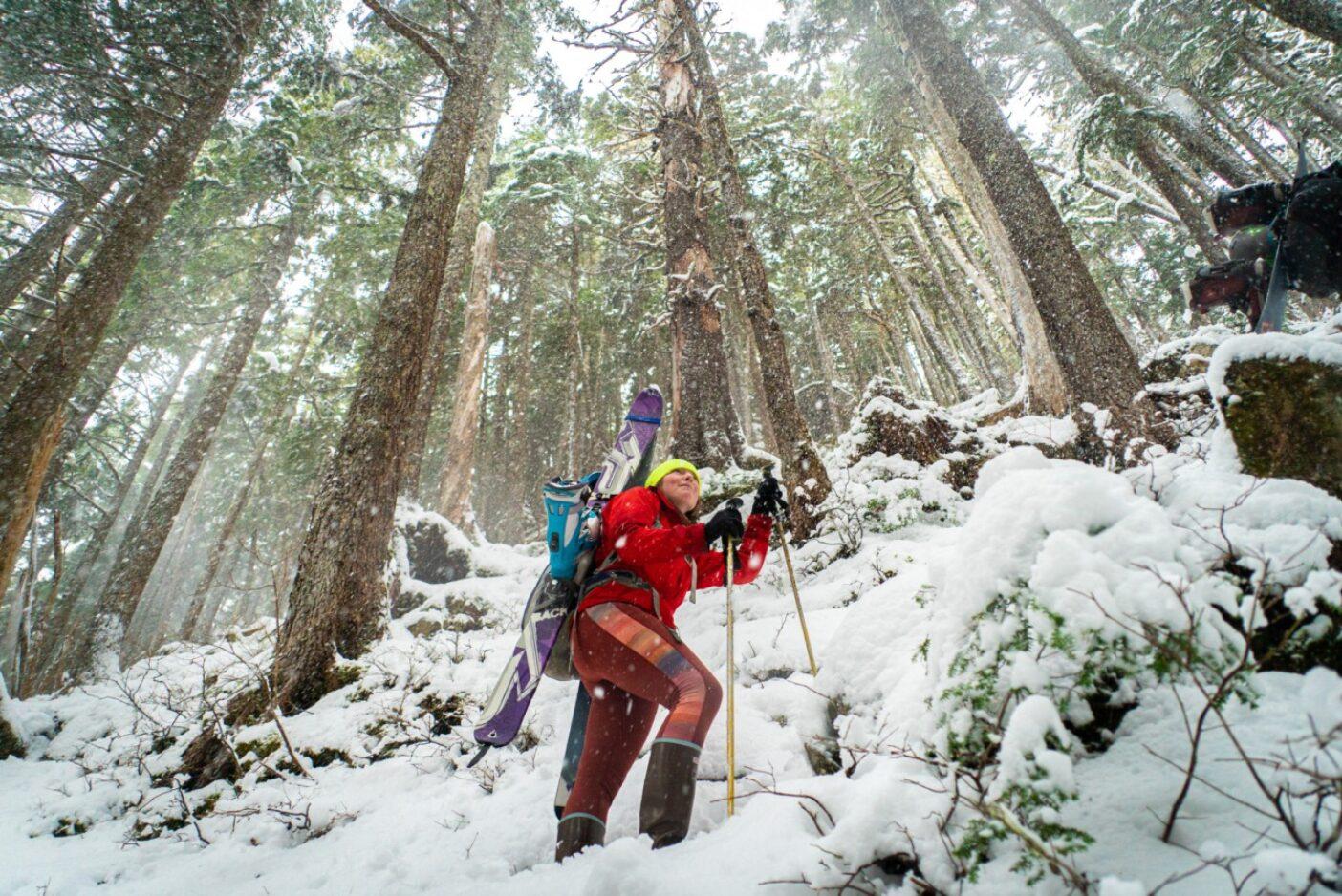 シトカの伝統的なスキーエリア「ピクニック岩」を目指し、板を担いで樹林帯を登る。写真:リー・ハウス