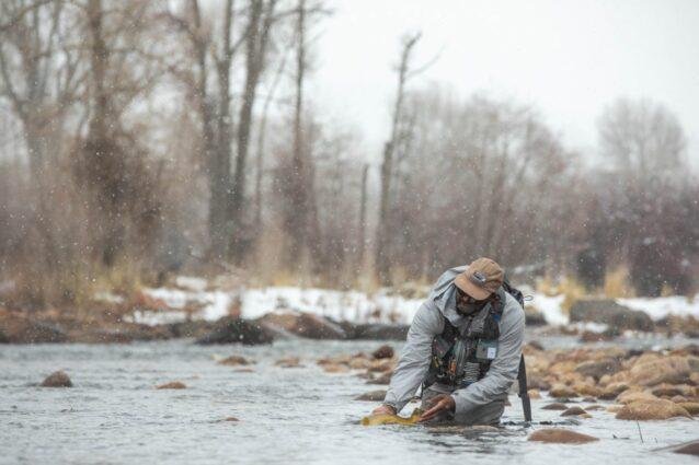 生物多様性がこの瞬間を可能にした。健康な水域は健康な魚と幸福なアングラーを後押しする。モンタナ州コロンビア・フォールでリリースするヒラリー・ハッチンソン。Photo:Andrew Burr