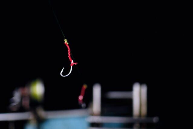 赤い糸は、サバにはたまらない小さな甲殻類を模しています。餌の必要はありません。Photo: Amy Kumler