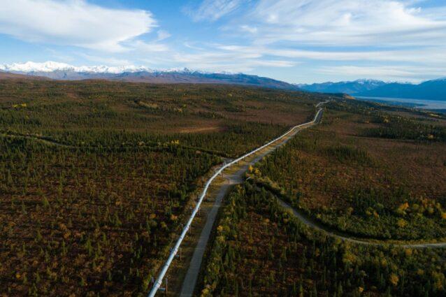 トランス・アラスカ・パイプラインはプルドー湾からアラスカのバルディーズへと石油を運ぶ1,280キロのパイプラインだ。アメリカで最も豊かな州のひとつであるアラスカは、州の歳出をたったひとつの産業、石油とガスに依存する。共和党は何十年も北極圏国立野生生物保護区を石油とガス開発に解放しようと提案してきた。その可能性が近づくたびに、それは民主党、あるいはクリントン大統領によって拒否されてきた。2017年、アラスカ州代議員のリサ・マコウスキーは、トランプ元大統領が制定させた税法に北極圏国立野生生物保護区の産業開発への解放を忍びこませた。それ以来、開発を迅速に進めるために積極的な措置が講じられている。Photo:Keri Oberly