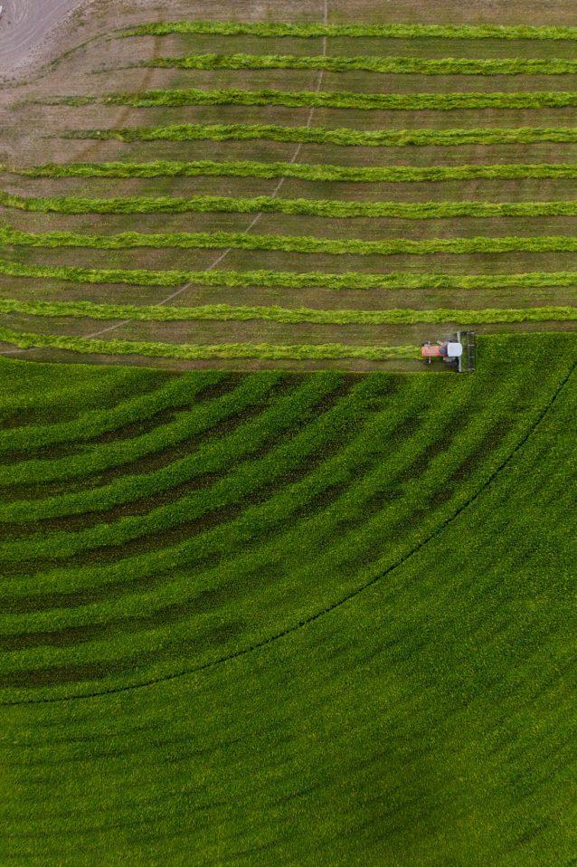 産業用ヘンプを成功させるためには、それが農家をはじめとするすべての人にとって恩恵をもたらすものとなる必要がある。Photo:Cory Richards