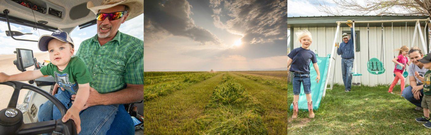 写真(左から右):シャナン・ライトの最大の望みは子供と孫に繁栄する農場を残すこと。Photo:Andrew Burr。産業用ヘンプは工業型農業慣行により劣化した土壌の回復に役立つ。Photo:Cory Richards。農業ができる未来を望む3つの理由。Photo:Andrew Burr