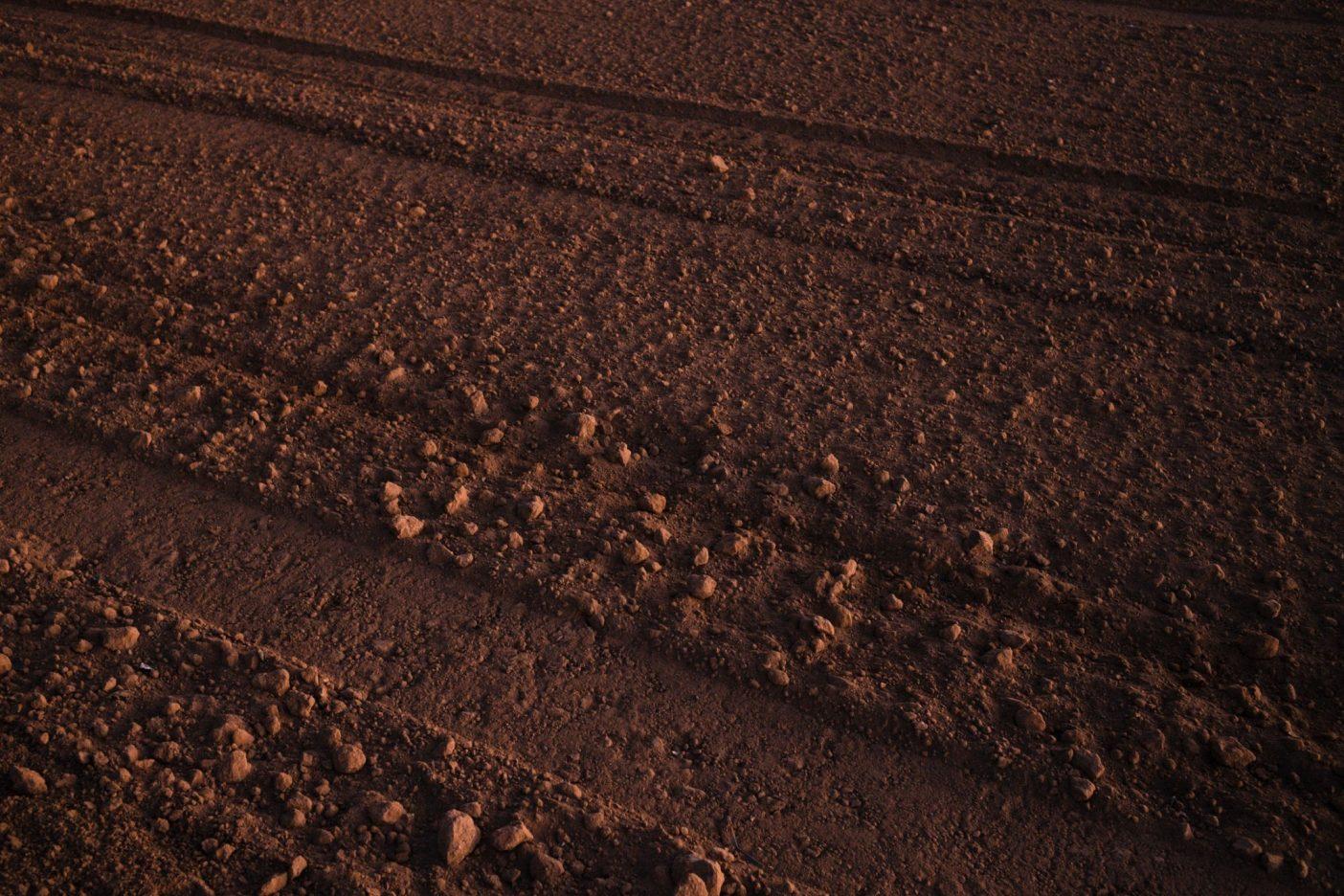 「そこには十分な空間と希望が存在する」と言うサモラ。「勤勉さがすべてだ」カリフォルニア州サリナス・バレーの日没。カリフォルニア州のサリナス・バレー
