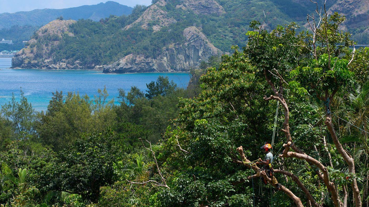 目の前に広がる美しいボニンブルーの海を眺めながらの小休止。クライマーにしか味わえない特等席だ。Photo:Reo Fukumoto