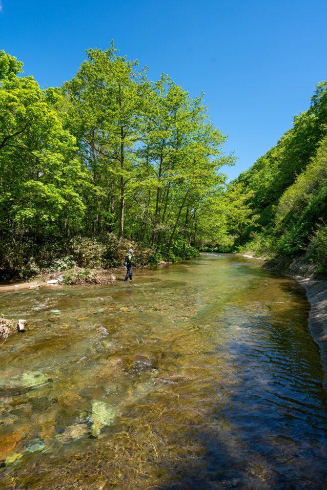 森と水のささやきに耳を傾けながら、ゆっくりと川を遡行する。釣りの時間は自然と向き合うための大切な時間。 写真:奥本 昌夫