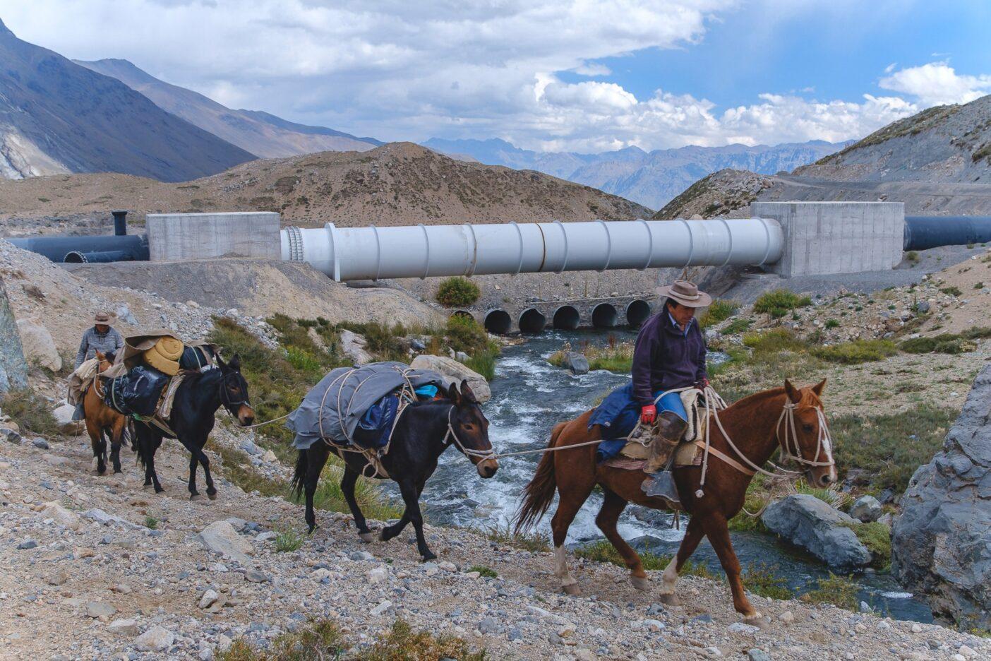 マイポ渓谷には何世代にもわたる乗馬の伝統がある。ラバ追いはかつて手付かずだった景観へのアルト・マイポの影響を目の当たりにしてきた。チリ、マイポ渓谷のラグナ・ロ・エンカナド地域。写真:Rodrigo Manns
