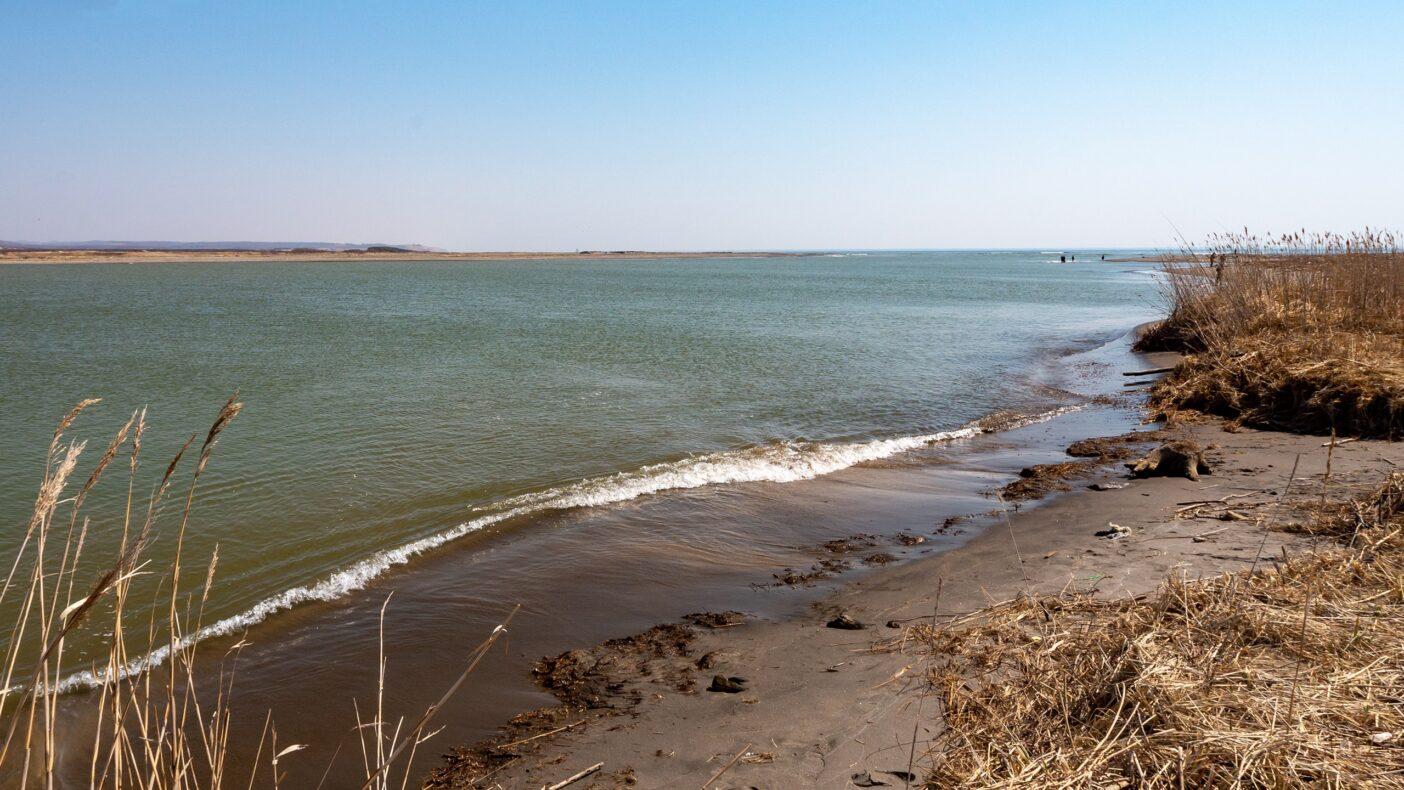 貴重な自然が残された十勝川河口の汽水域。多くの甲殻類や小魚が生息しており、それを餌として捕食するアメマスを大型に育む。写真:奥本 昌夫