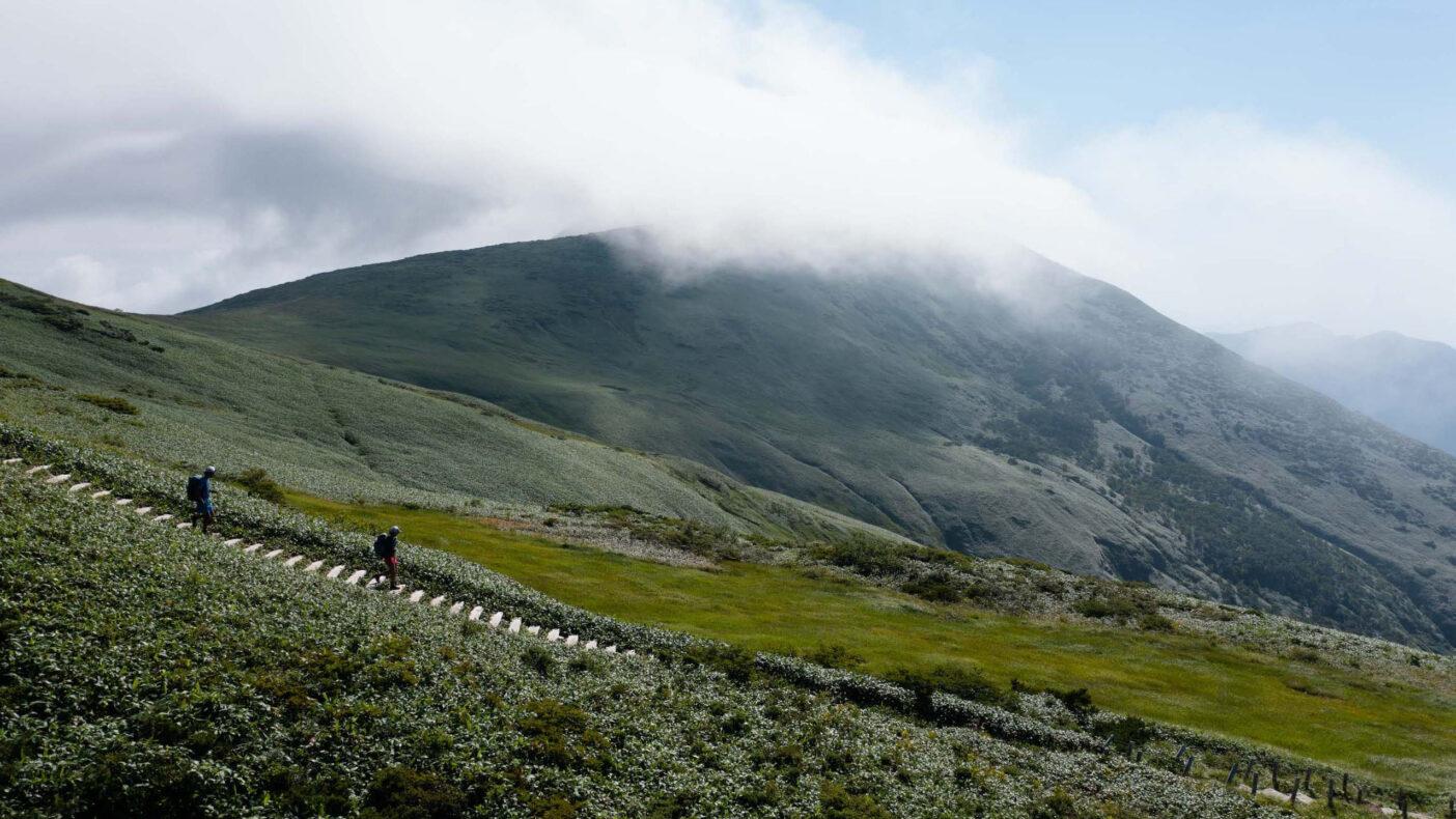 これだけの山間に、きれいに整備された木段が続く。車道からはどれだけ離れているのだろうか 写真:小関 信平